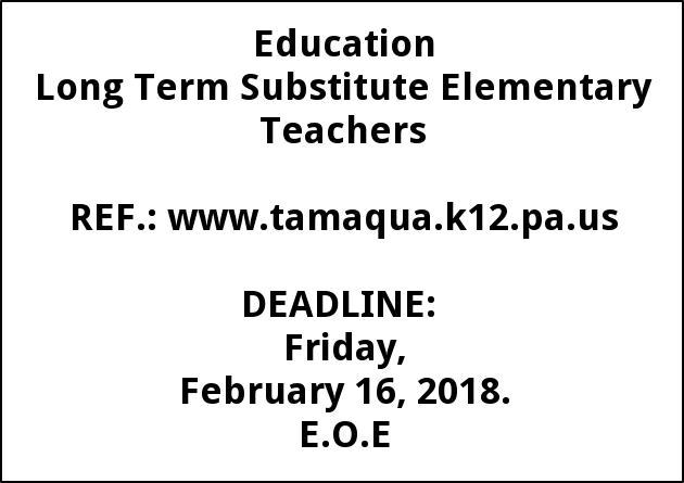 Long Term Substitute Elementary Teachers