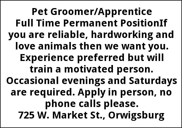 Pet Groomer/Apprentice